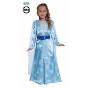 Frozen Ijsprinses Elsa meisjes jurk