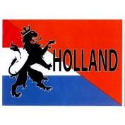 Holland vlag leeuw
