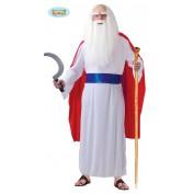 Druide Panomarix kostuum