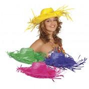 Hawaii hoeden kleurig