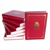 Het grote Sinterklaasboek met mijter