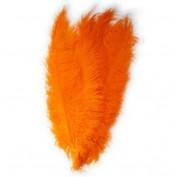 veer oranje groot