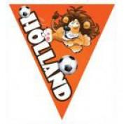 puntvlaggen oranje leeuw