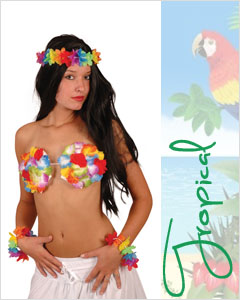 Hawaii Feestje